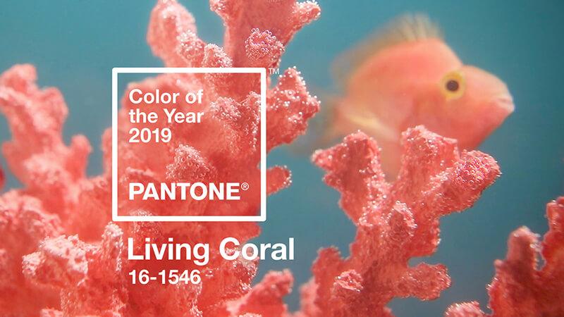 Beitrag zur PANTONE Farbe des Jahres von EightyNine, Agentur für Corporate Design und Grafik in St.Gallen, Schweiz