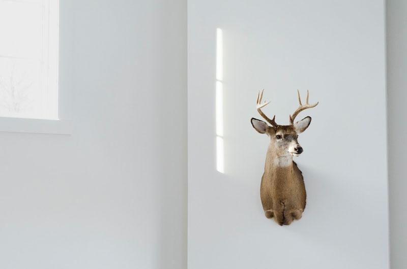 Inspiration zur Markenbildsprache und Unternehmen repräsentieren von EightyNine, Agentur für Corporate Design und Grafik in St.Gallen, Schweiz